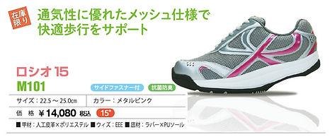 item_M101.jpg
