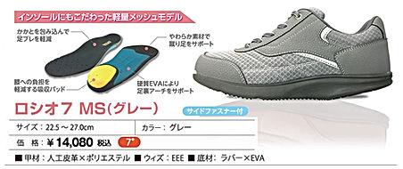 item_MS_gr.jpg