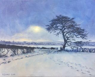 Waddington in winter - Lincolnshire, England