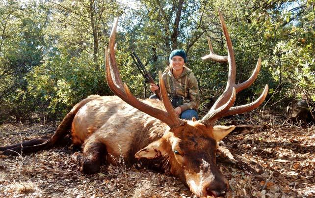 Hunting_content_region6_elk2