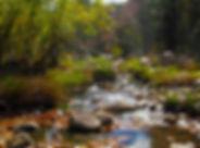 Trails_WorkmanCreek.jpg