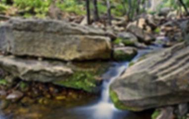 Trails_Eastwebbertraill.jpg