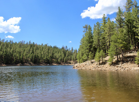 Explore Knoll Lake on the Mogollon Rim