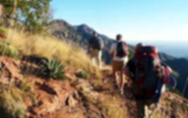 Trails_MazatzalDivideTrail.jpg