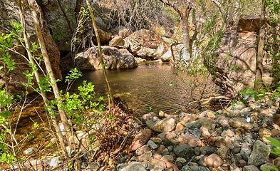 Trails_Pintocreektrail.jpg