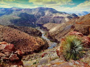 Discover the Salt River Canyon Wilderness in Gila County, AZ