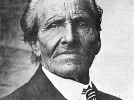 Gila County Pioneer - David D. Gowan