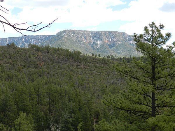 The Majestic Mogollon Rim