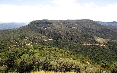 Trails_McFadden-Horse-146.jpg