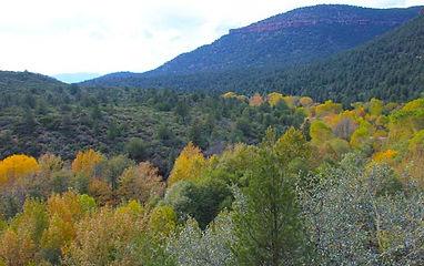 Trails_WhitehillsRoute.jpg