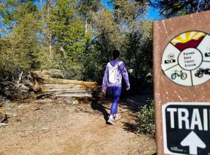 Mogollonrim_todo_hiking.jpg