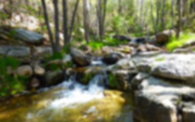 Trails_Hortoncreek_2.jpg
