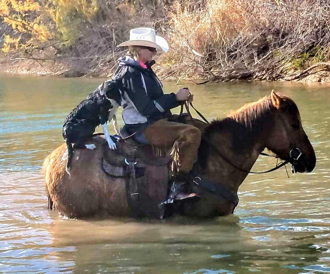 Crossing the Creek in Tonto Basin