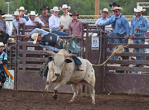 Mogollonrim_todo_rodeo.jpg