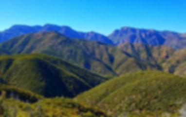 Trails_GoldRidgeTraill.jpg