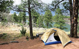 stay_camping.jpg