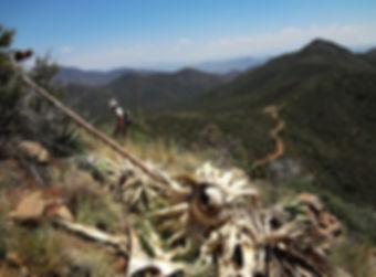 Trails_Bobtail-Trail.jpg