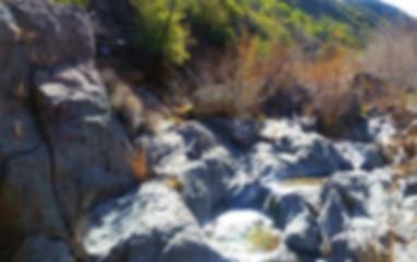 Trails_SouthforkTrail.jpg