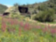 Globe_Sulphide-Del-Rey-Campground-compre