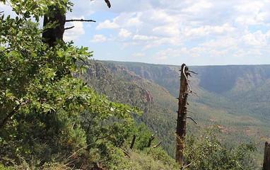 Trails_Turkeytrail.jpg