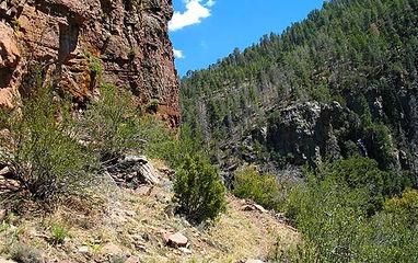Trails_ReynoldsCreek.jpg