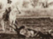 History_detailimage_famouscowboys.jpg