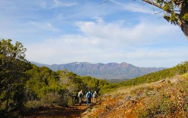 Trails_AmericanGulch.jpg