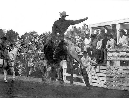 Payson Pro Rodeo History
