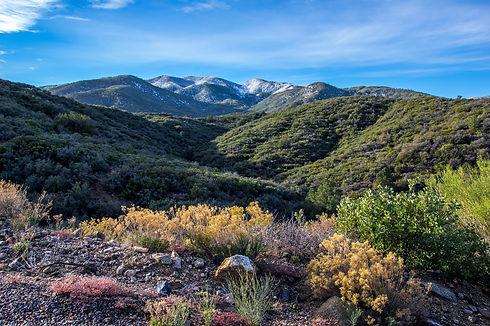 Pinal Mountains, Arizona