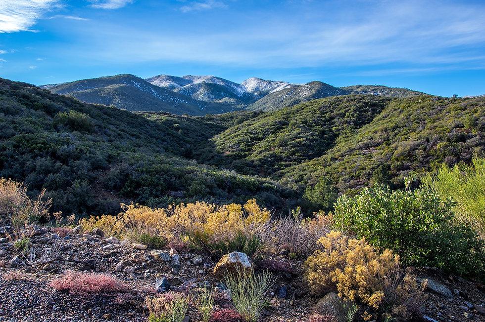 Pinal Mountains near Globe, Arizona