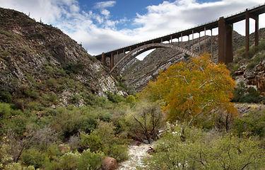 Trails_LOSTTrail.jpg