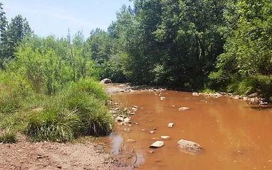 Birding Gila County Flowing Springs