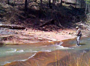 Streams_canyoncreek.jpg