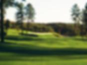 GolfCourses_ChaparralPinesGC.jpg
