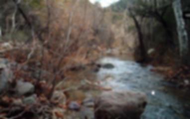 Trails_DeerCreekTrail.jpg