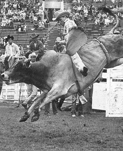 Gila County Famous Cowboys