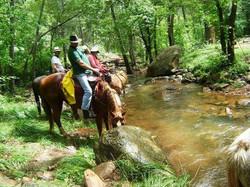 Horseback Riding Christopher Creek