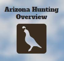 Hunting_Review.jpg