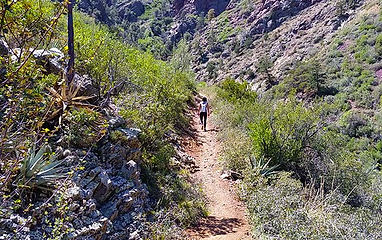 Trails_Barnhardttrail.jpg