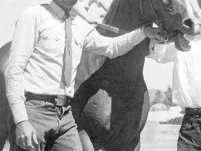 Gila County History Highlights - Joe Bassett - Cowboy, Horse Trainer and World Champion Team Roper