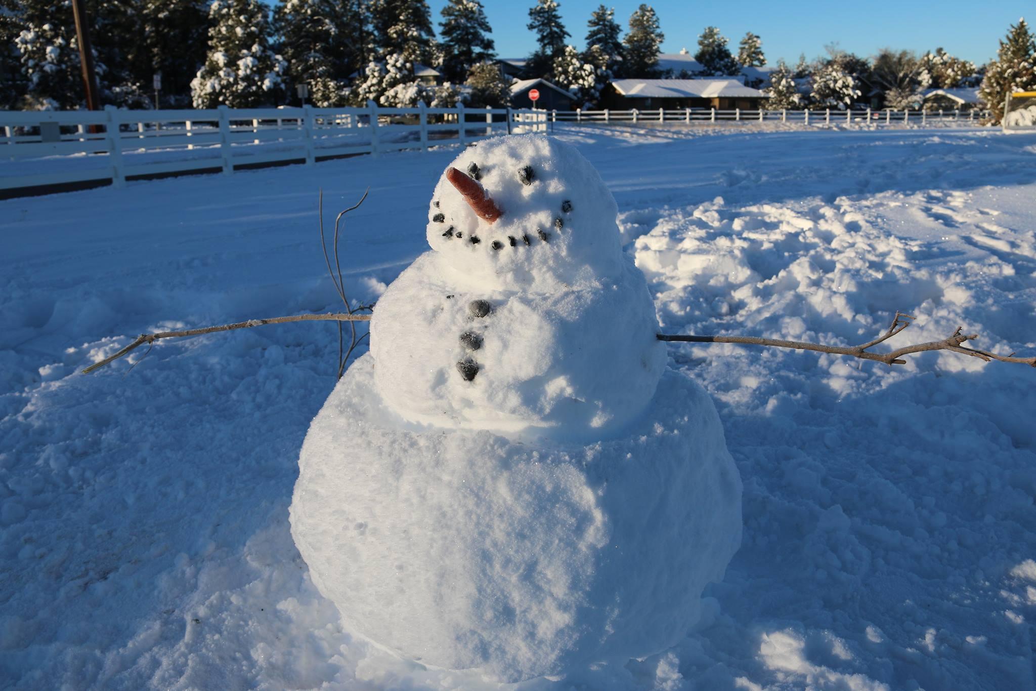 Snow Fun Christopher Creek
