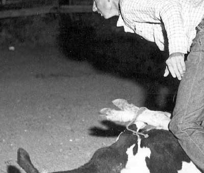 Famous Cowboys: Leroy Tucker