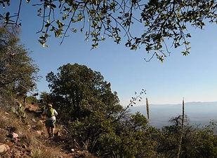 Trails_YBarTrail.jpg