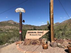 Aravaipa Farms - Winkelman, AZ