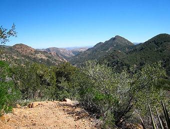 Trails_SpencerSpringTrail.jpg