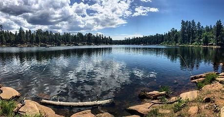 Birding Gila County Woods Canyon Lake