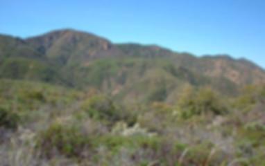 Trails_PigeonspringsTrail.jpg