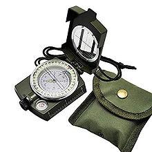 stayingalivein_compass.jpg