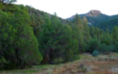 Trails_Cienega-Spring-145traill.jpg