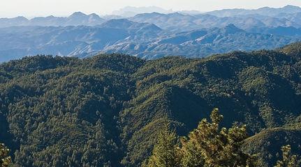 Trails_PioneerTrail.jpg
